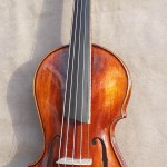 5 String Asymmetric Violin