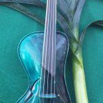 No 494. The 5 String Salvador Violin