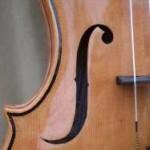 Various Asymmetric Violins