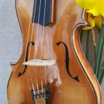 No. 498 The Asymmetric 5 String Violin