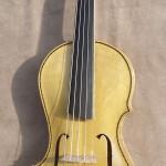 5 String Asymmetric Violin