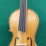 5 String Violin