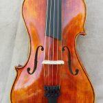 5 Stringed Viola