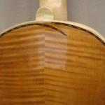 5 Stringed Violin
