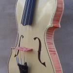 Asymmetric Violin