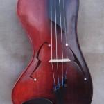 Salvador Violin
